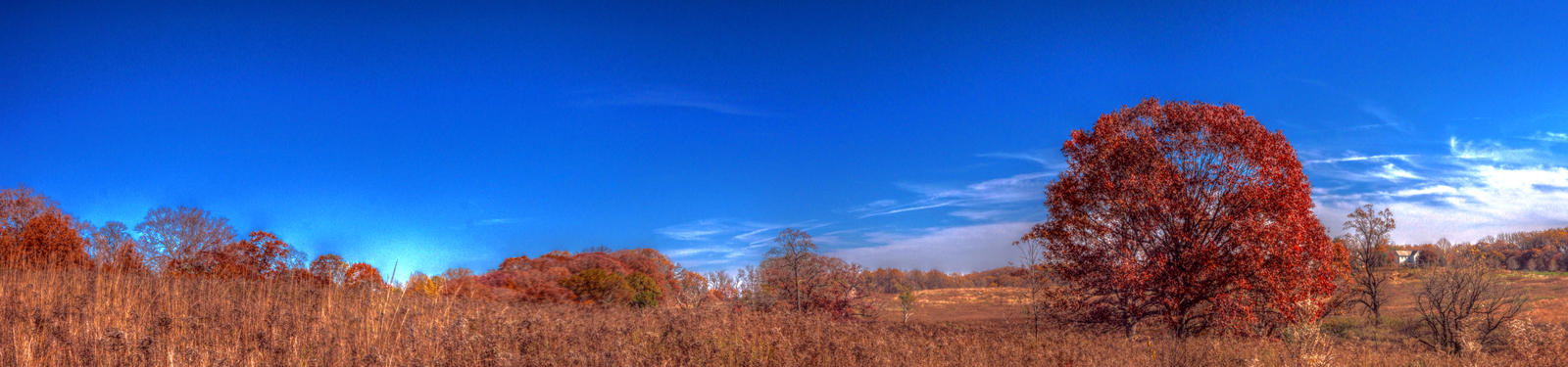 Panorama 3859 hdr pregamma 1 mantiuk06 contrast ma
