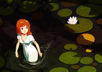 Water lily by kosal
