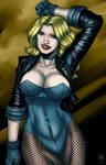 DC Comics : Black Canary