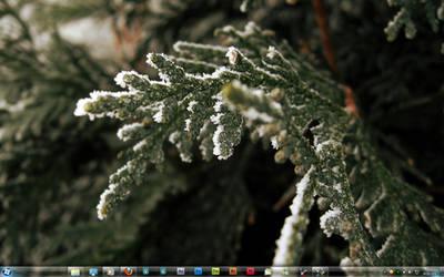 First 2010 Screenshot by Steel89