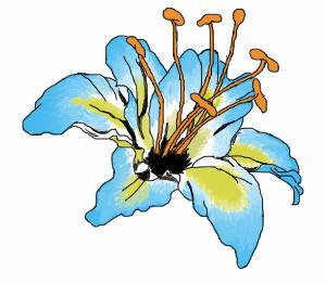 Flower. - flower tattoo