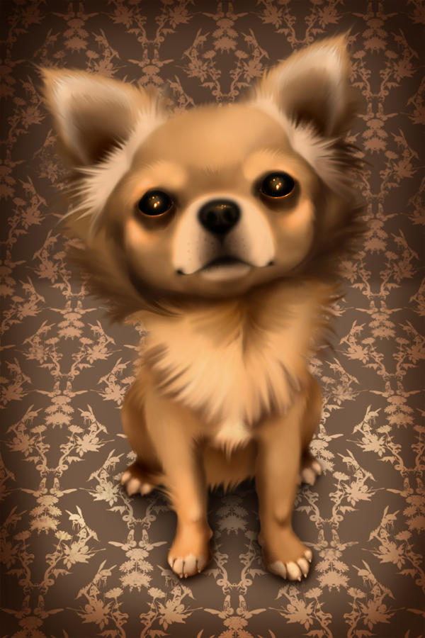 Chihuahua by ScaryDeadGirl