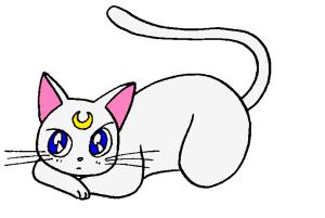 Tiggidou's Profile Picture