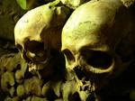 Skulls in Stereo