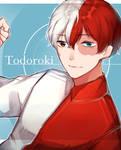.: Todoroki :.