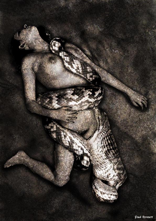 Snake Bite By Paul Syn