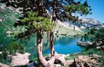 Lamoille Lake