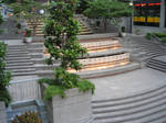 Harbor Steps 5