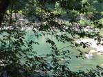 Skykomish River 1