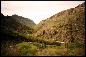 Sabino Canyon by rifka1