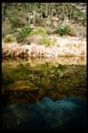 Sabino Canyon 2