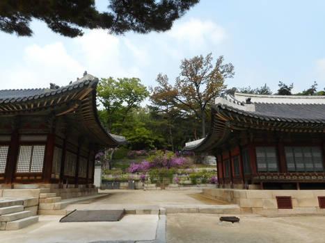 Buildings and nature - Changgyeonggung Palace