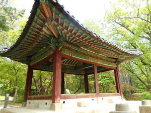 Temple keeper cat - Changgyeonggung Palace