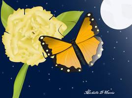 night flight by michelledh