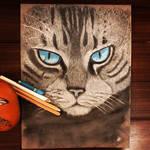 Tabby Cat in Pastels