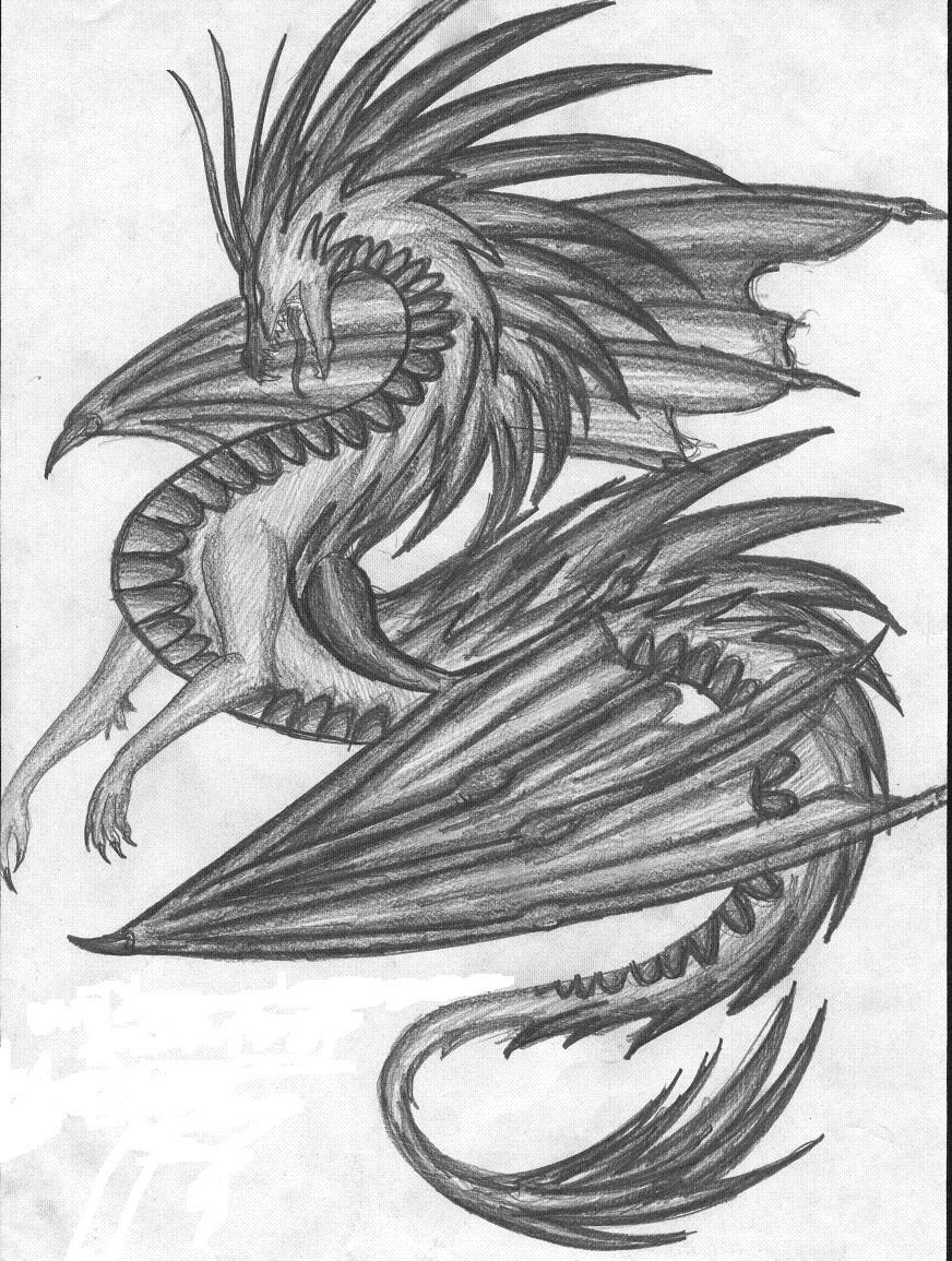 dragon drawing by fantasi-dragen on DeviantArt