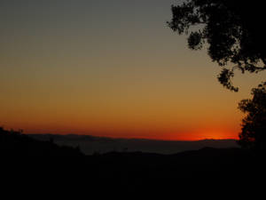 tramonto aTirli o nellaSavana?