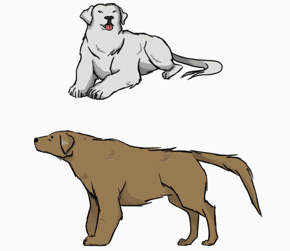 Isan Sui (Water Bender & Water Avatar) Polar_bear__brown_bear_dog_by_theoriginalkea-d67u10m
