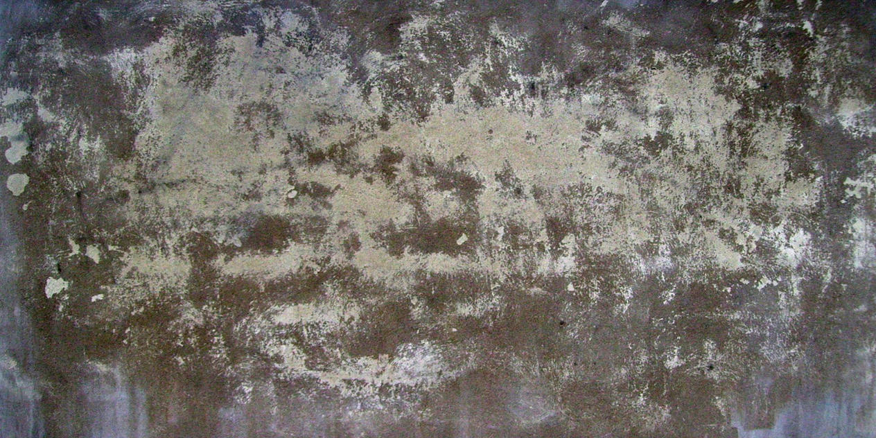 Concrete texture by kolli on deviantart for Old concrete wall texture