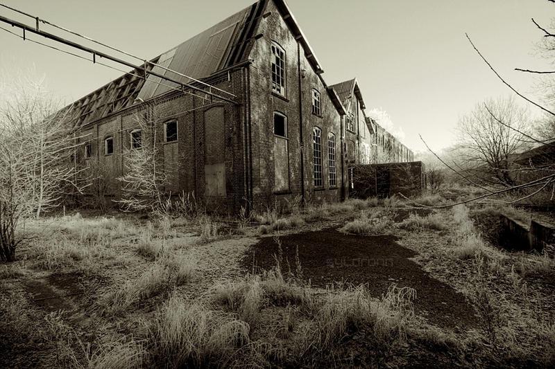 Wasteland by syldronn