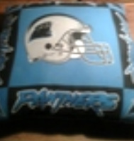 Panthers Pillow 2 by tetsigawind