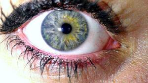~My Eye~