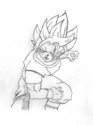 Newest Goku SS1