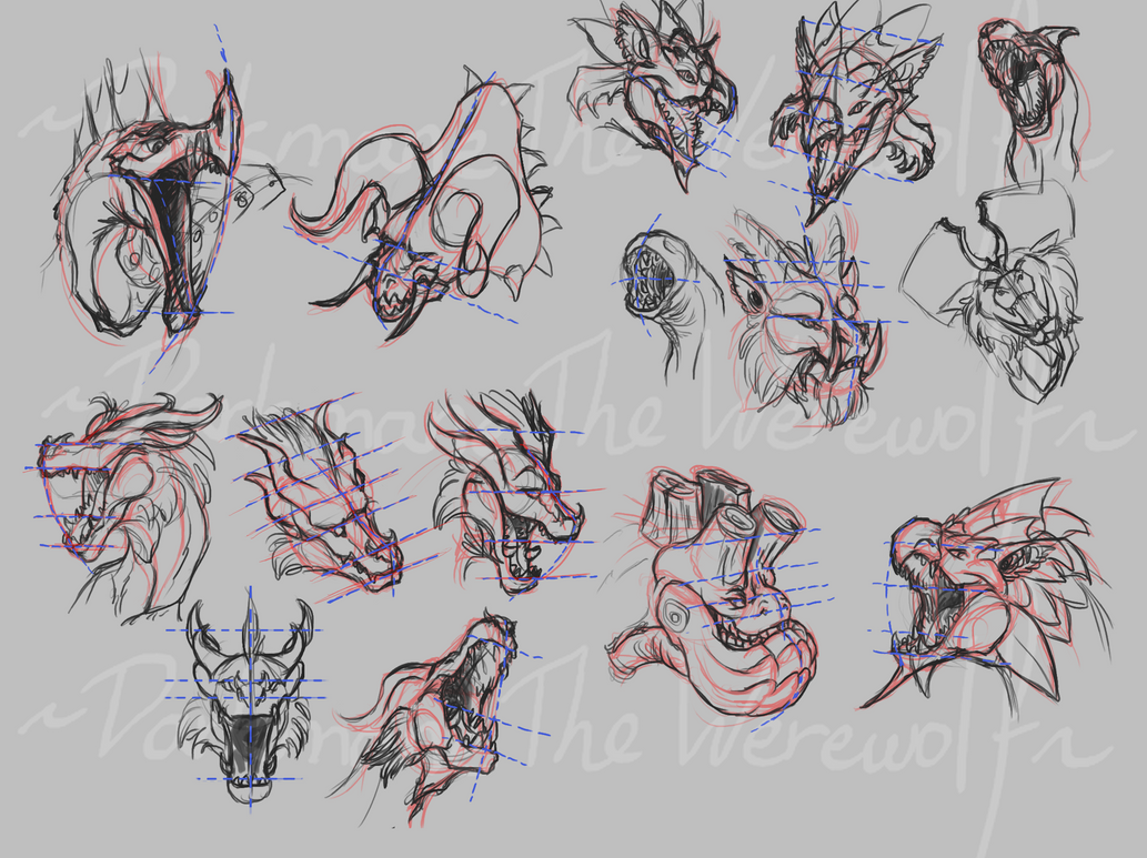 Line Drawing Monster : Dragon head perspective with monster hunter by