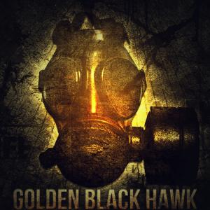 GoldenBlackHawk's Profile Picture