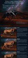 Tutorial part1- Horse prep colour change markings