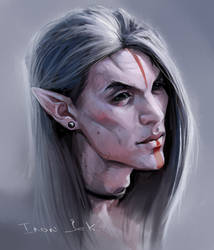 Dunmer option by LonGrand