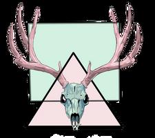 Skull of deer by SoAdventure