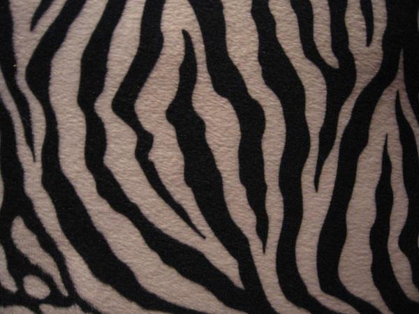 Zebra Part One by TeufelsweibStock