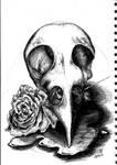Sketches 2018-07-11 Bird Skull
