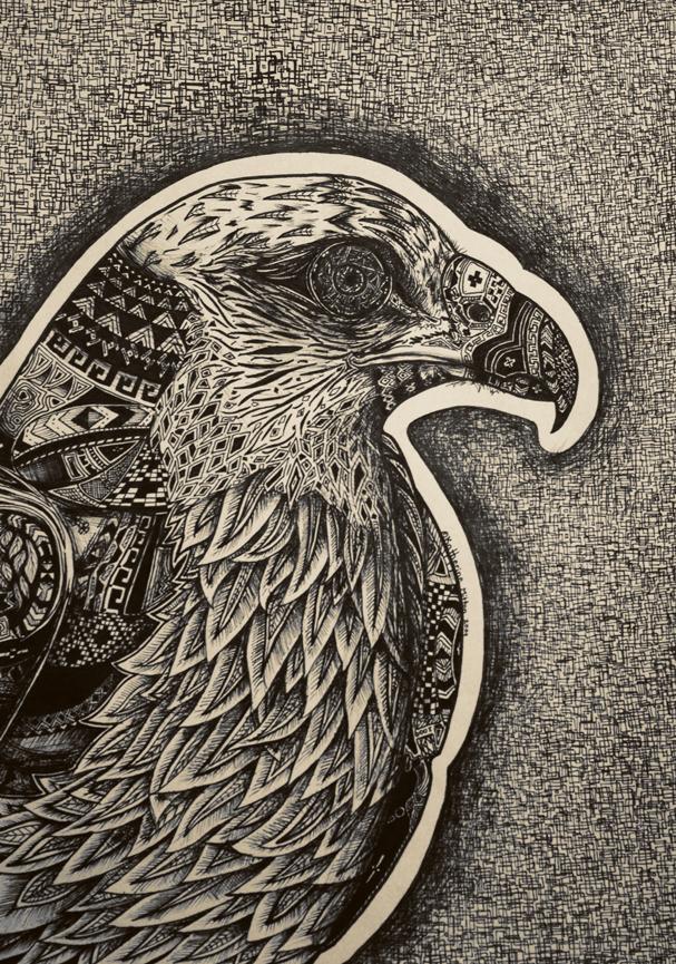 Native Symbols of the hawk