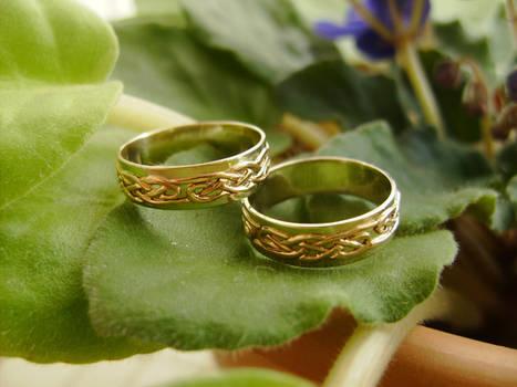 Wedding Bands Celtic Knot