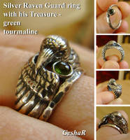 Raven Ring by GeshaR