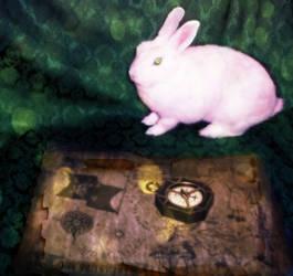 Bunny Of Time by LovelyAngelCutie