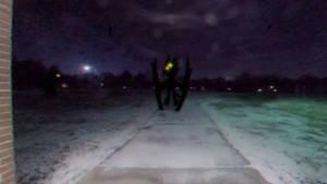 Pteronodon's Ghost
