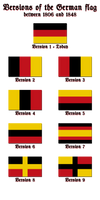 Versions of the German flag