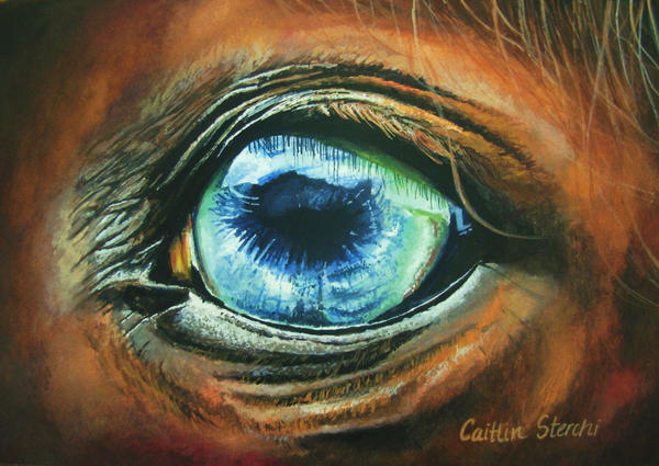 Horse Eyes Painting Horse Eye by Cowgirlcait
