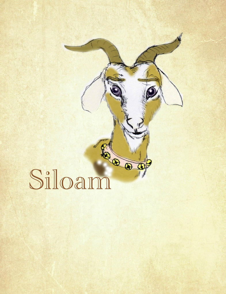 siloam chat Porch, the home services platform, connects homeowners with quality home improvement, repair and maintenance professionals and also serves as.