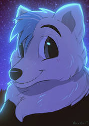 Arctic Night by OrcaOwl