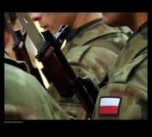 Polish Army by kukimanster