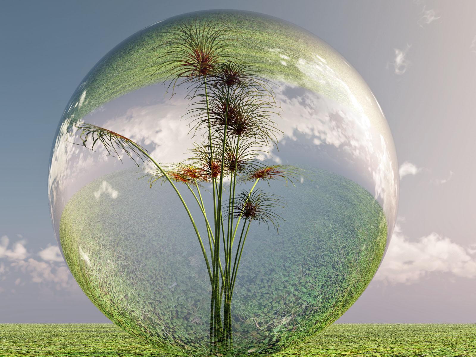 Transmutation..... à la recherche de la paix intérieure ..... ( 4 ) - Page 3 Bulle_de_nature__by_michel_de_lorient-d4cawzv