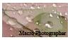 Macro photographer stamp by GeekGod4