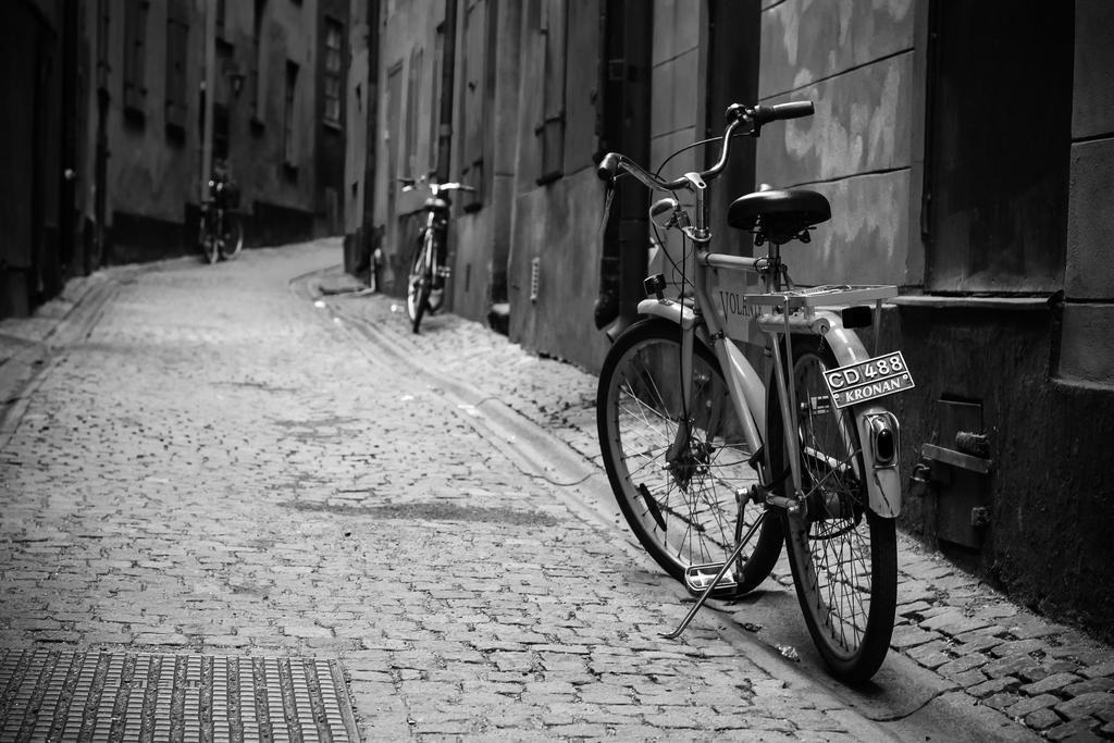 forever cycling by emregurten