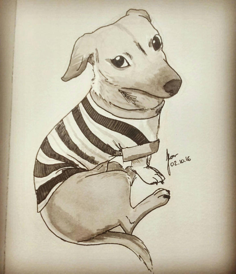 Patient dog - inktober day 2 by Bohlen