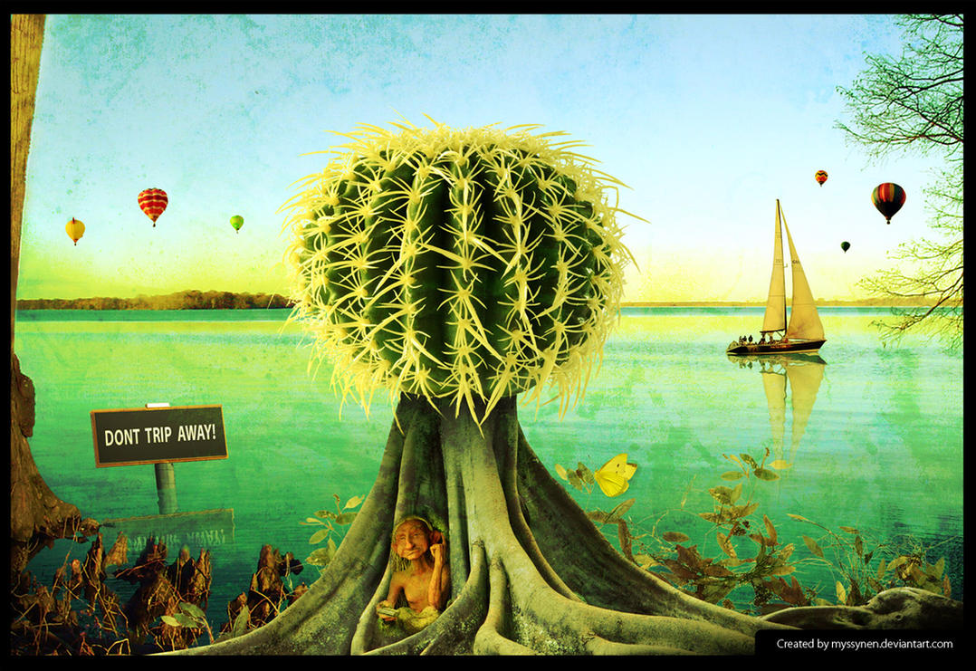 Visionary Mind: 2 - Trip by Myssynen