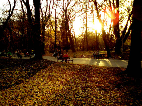 Fall Love park
